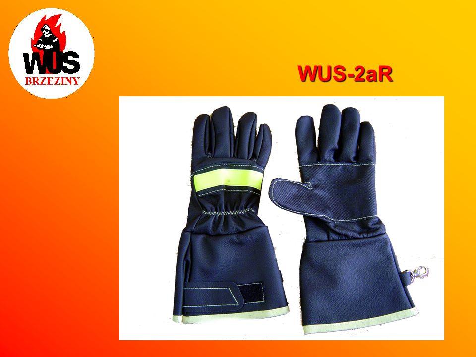 WUS-2aR