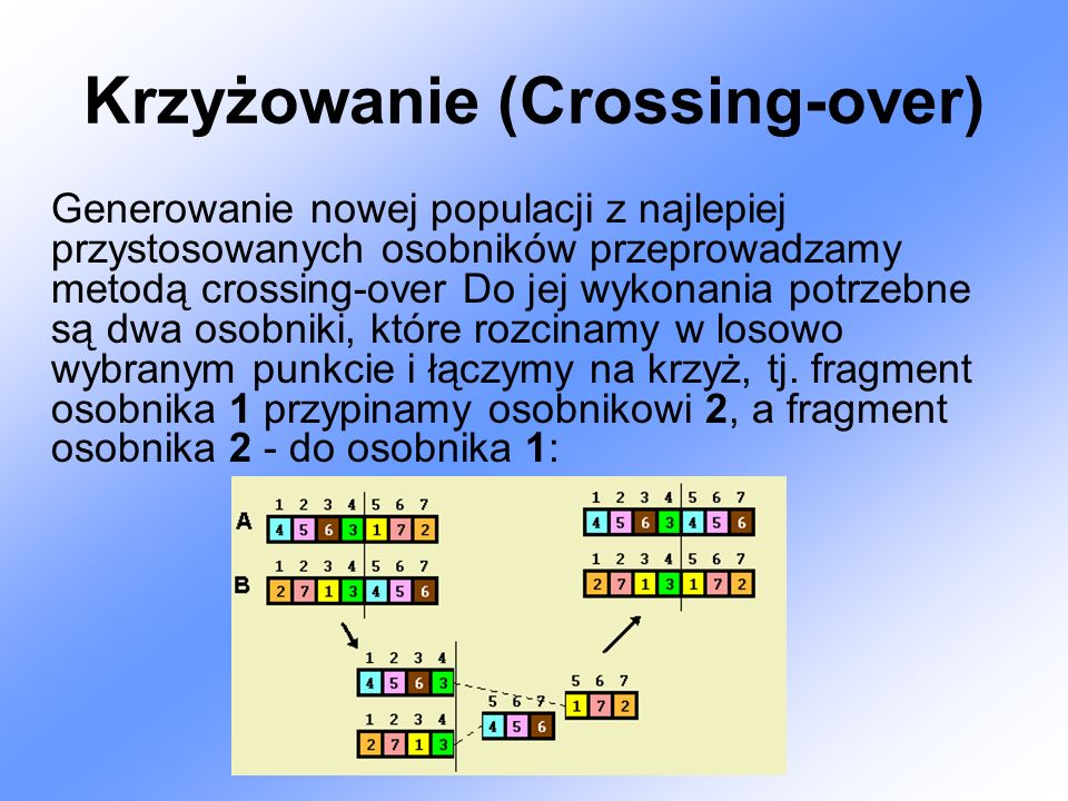 Krzyżowanie (Crossing-over)