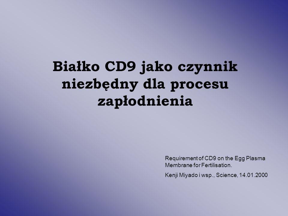 Białko CD9 jako czynnik niezbędny dla procesu zapłodnienia