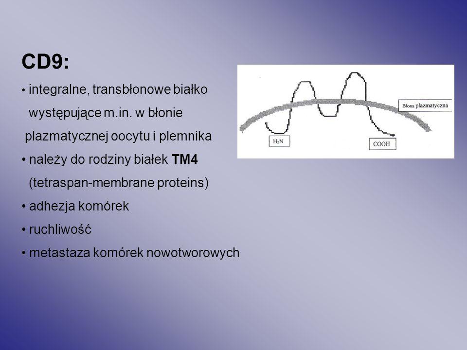 CD9: występujące m.in. w błonie plazmatycznej oocytu i plemnika
