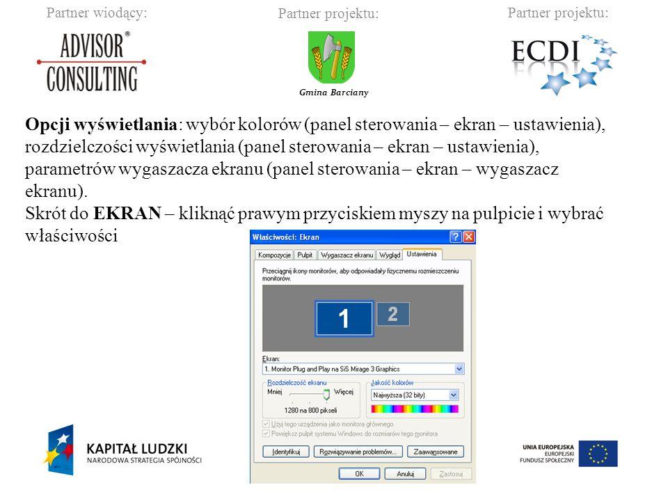 Opcji wyświetlania: wybór kolorów (panel sterowania – ekran – ustawienia),