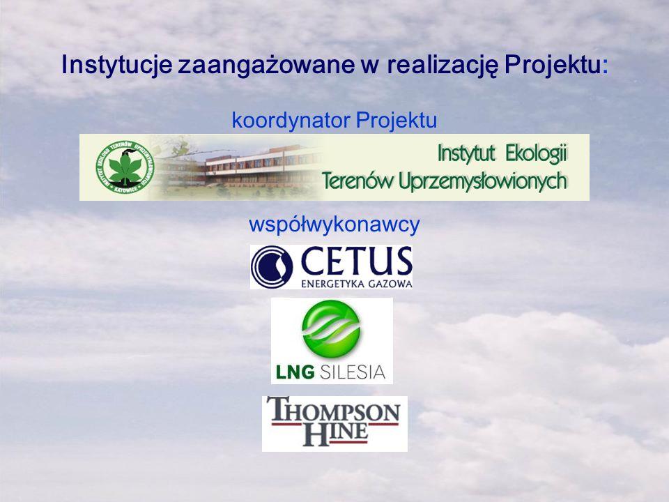 Instytucje zaangażowane w realizację Projektu: