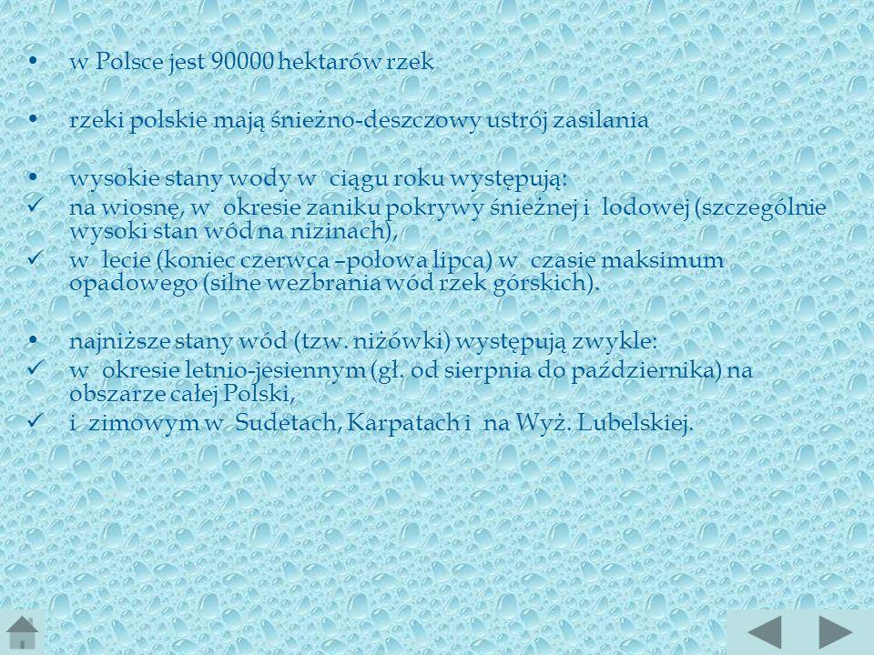 w Polsce jest 90000 hektarów rzek