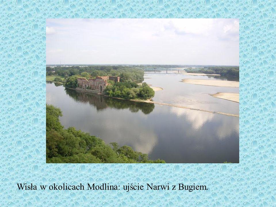 Wisła w okolicach Modlina: ujście Narwi z Bugiem.
