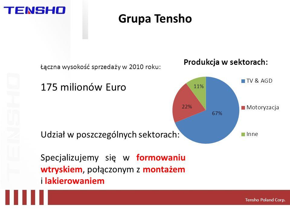 Grupa Tensho 175 milionów Euro Udział w poszczególnych sektorach:
