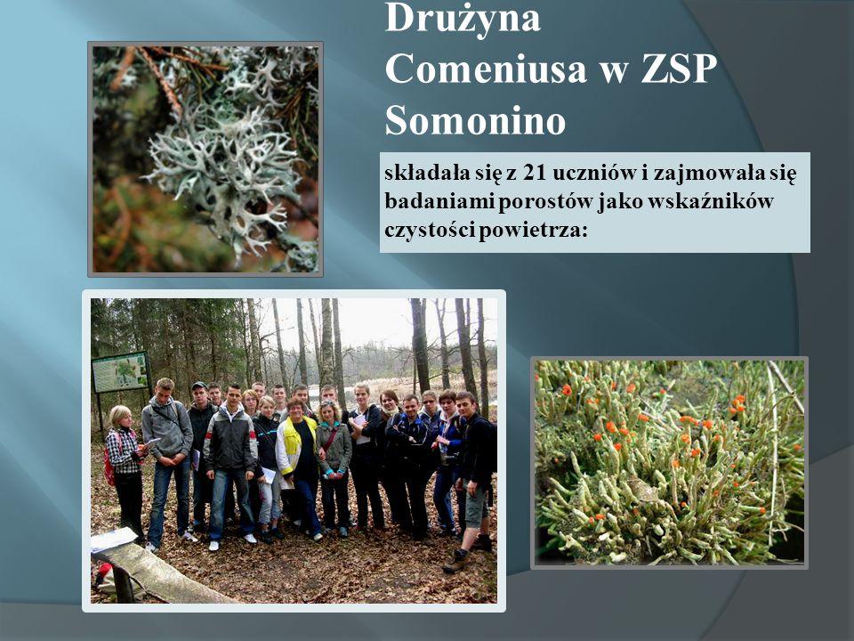 Drużyna Comeniusa w ZSP Somonino