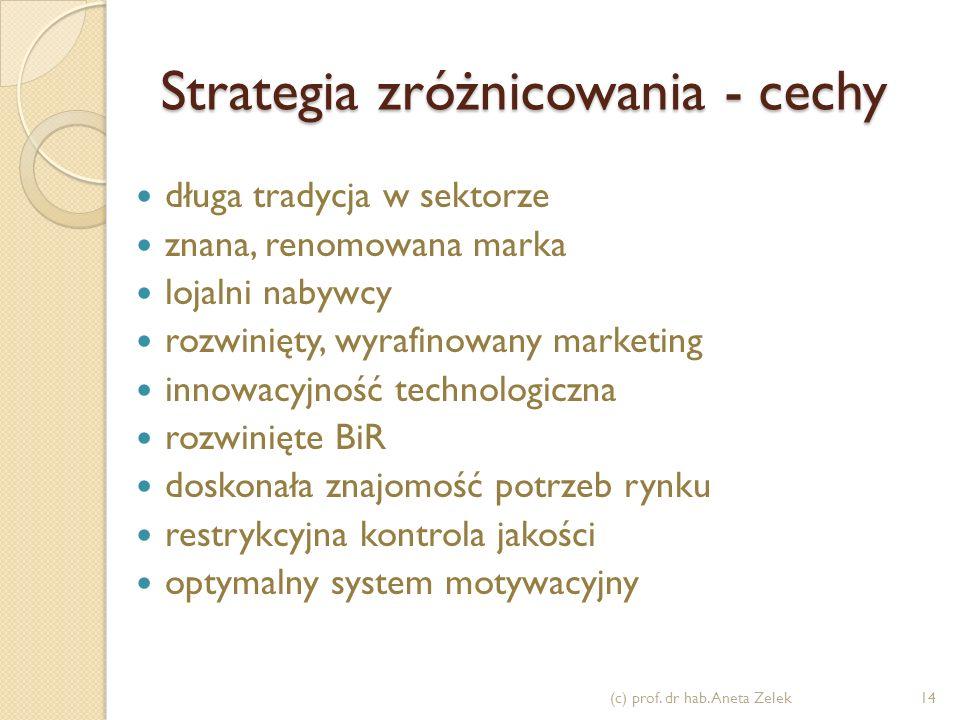 Strategia zróżnicowania - cechy