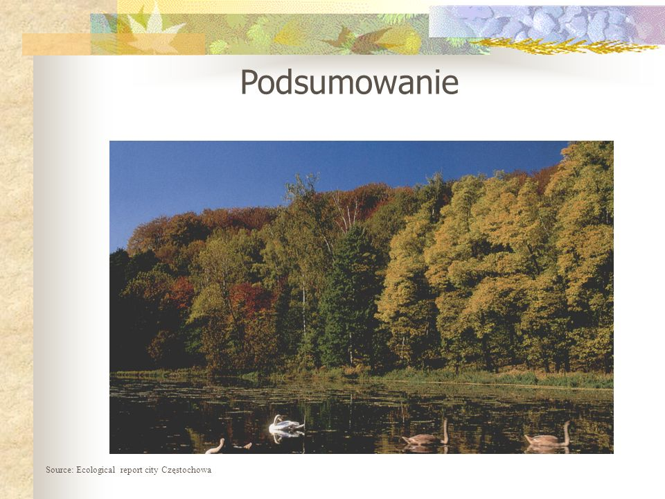 Podsumowanie Source: Ecological report city Częstochowa