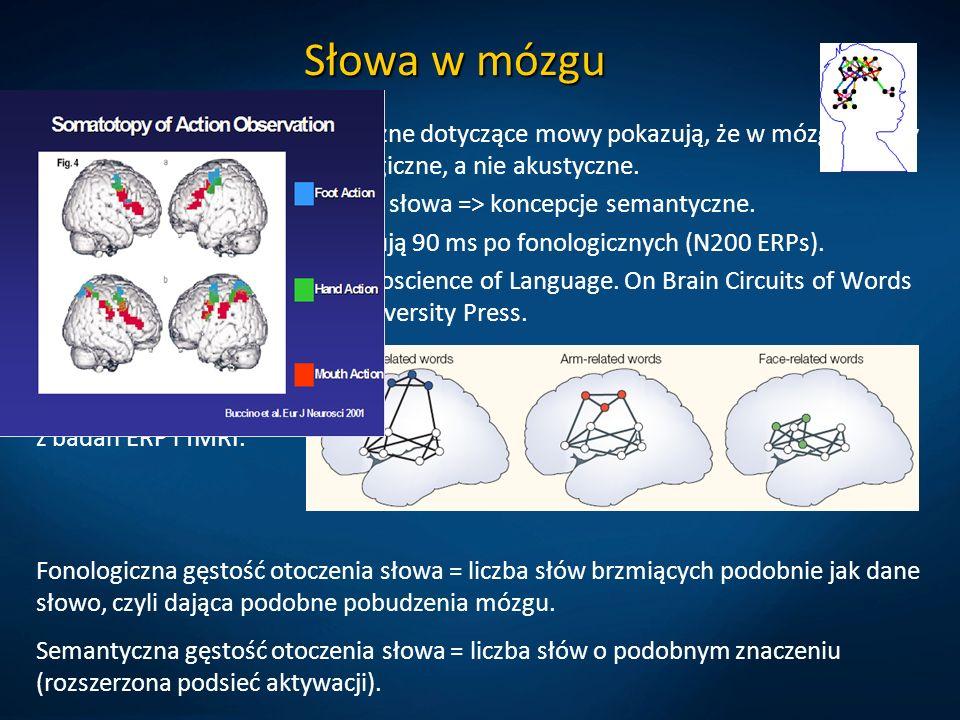Słowa w mózgu Eksperymenty psycholingwistyczne dotyczące mowy pokazują, że w mózgu mamy dyskretne reprezentacje fonologiczne, a nie akustyczne.