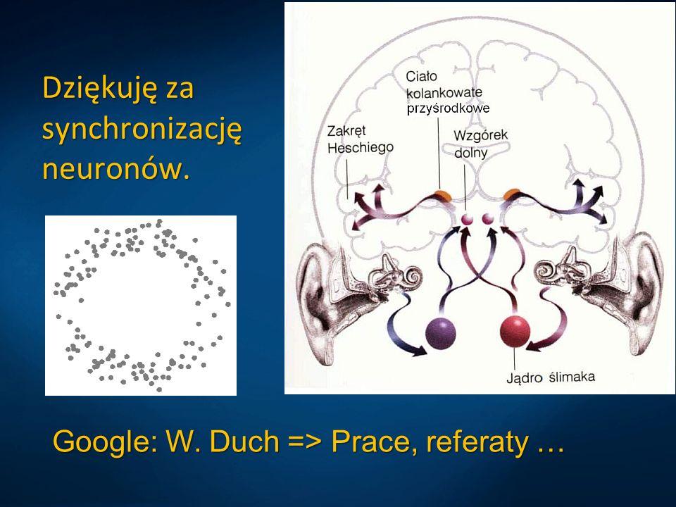 Dziękuję za synchronizację neuronów.