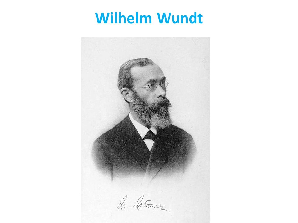 a biography of wilhelm maximilian wundt the founding figures of modern psychology Wilhelm max wundt the german psychologist and philosopher wilhelm max wundt (1832-1920) was the founder of experimental psychology he edited the first journal of experimental psychology and established the first laboratory of experimental psychology.