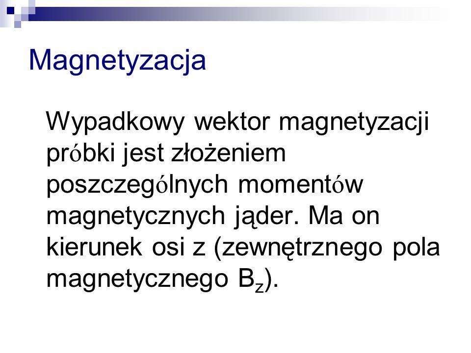 Magnetyzacja