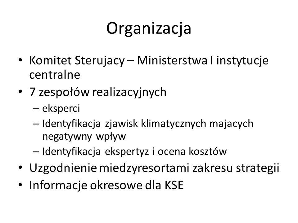 Organizacja Komitet Sterujacy – Ministerstwa I instytucje centralne