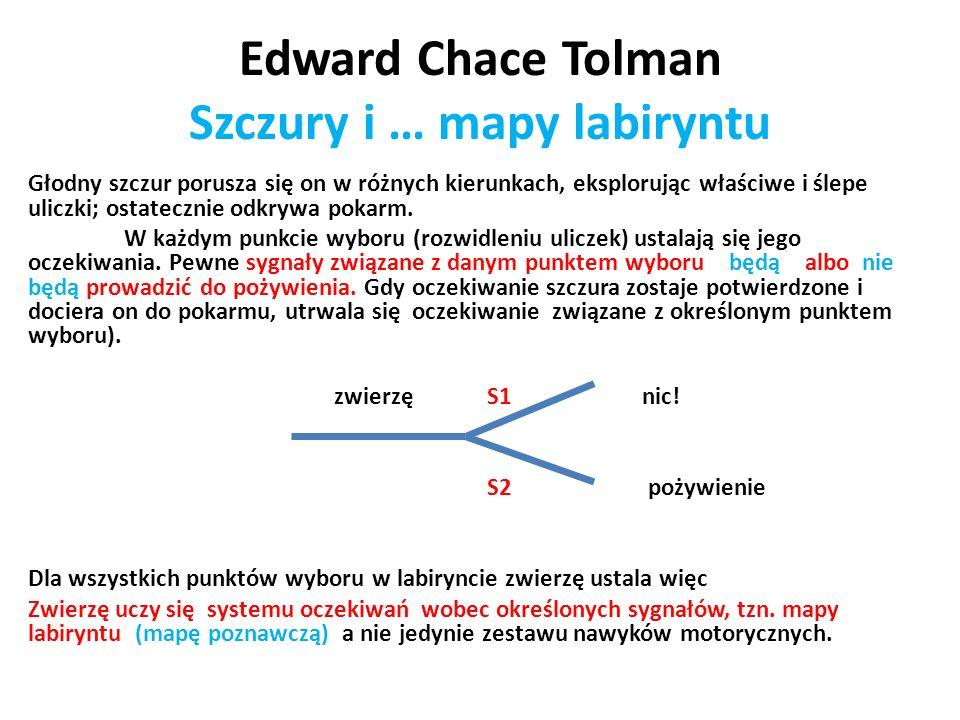 Edward Chace Tolman Szczury i … mapy labiryntu