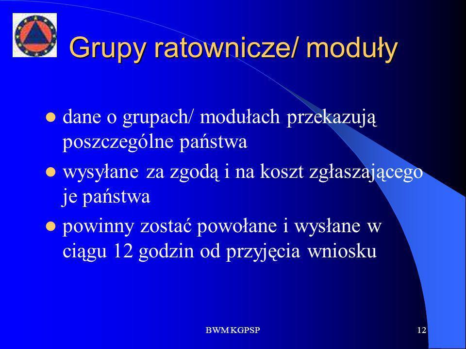 Grupy ratownicze/ moduły