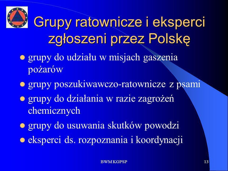 Grupy ratownicze i eksperci zgłoszeni przez Polskę