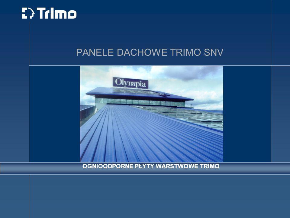 PANELE DACHOWE TRIMO SNV