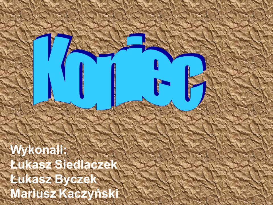 Wykonali: Łukasz Siedlaczek Łukasz Byczek Mariusz Kaczyński
