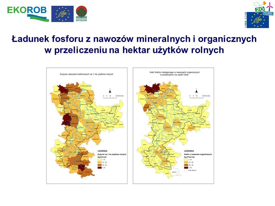 Ładunek fosforu z nawozów mineralnych i organicznych w przeliczeniu na hektar użytków rolnych