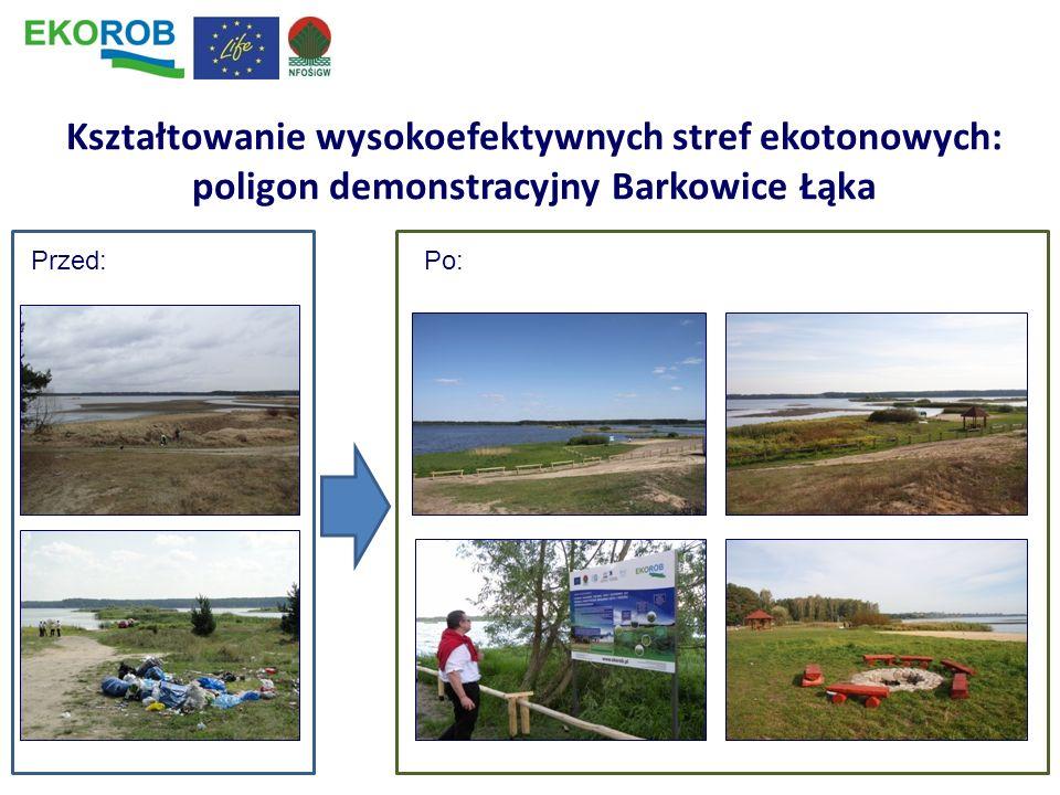Kształtowanie wysokoefektywnych stref ekotonowych: poligon demonstracyjny Barkowice Łąka