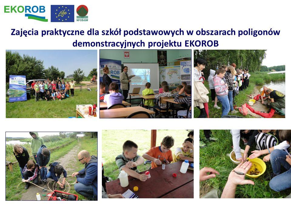 Zajęcia praktyczne dla szkół podstawowych w obszarach poligonów demonstracyjnych projektu EKOROB