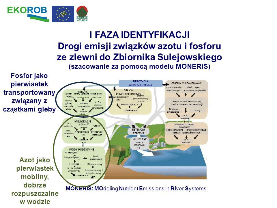I FAZA IDENTYFIKACJI Drogi emisji związków azotu i fosforu ze zlewni do Zbiornika Sulejowskiego. (szacowanie za pomocą modelu MONERIS)