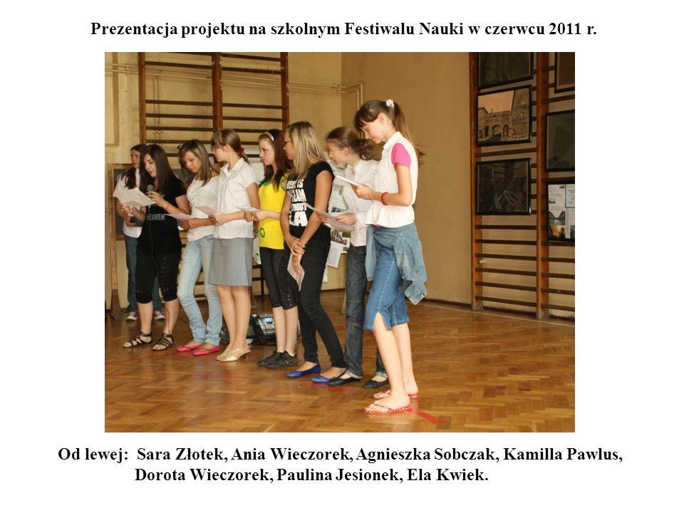 Prezentacja projektu na szkolnym Festiwalu Nauki w czerwcu 2011 r.