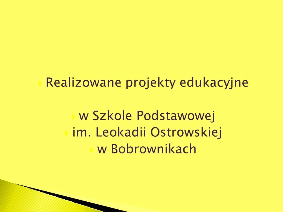 Realizowane projekty edukacyjne w Szkole Podstawowej