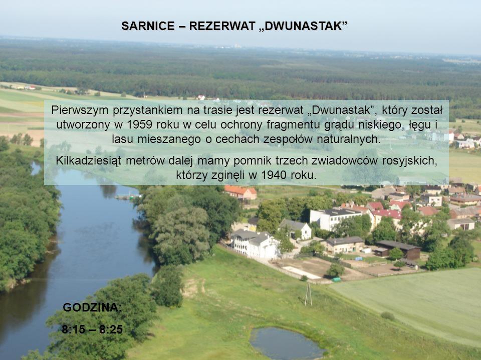 """SARNICE – REZERWAT """"DWUNASTAK"""
