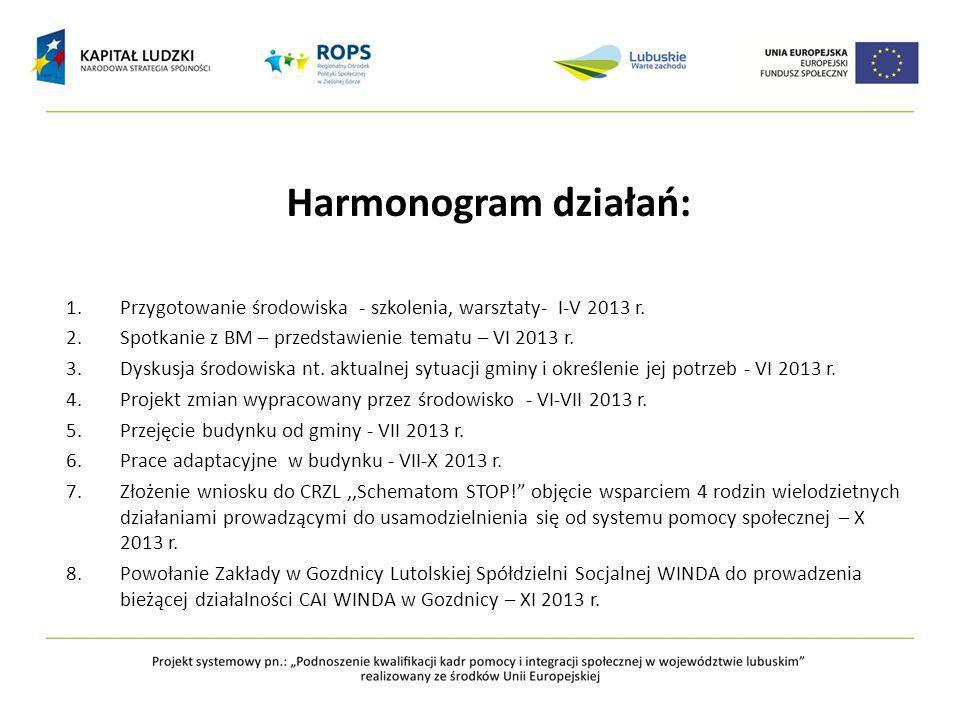 Harmonogram działań: Przygotowanie środowiska - szkolenia, warsztaty- I-V 2013 r. Spotkanie z BM – przedstawienie tematu – VI 2013 r.