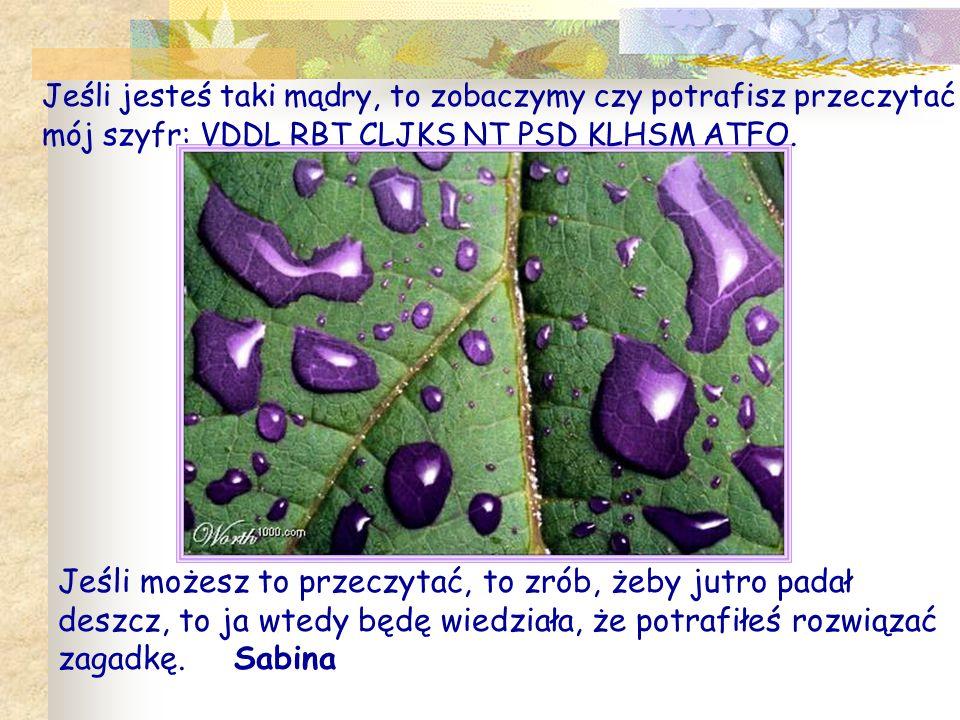 Jeśli jesteś taki mądry, to zobaczymy czy potrafisz przeczytać mój szyfr: VDDL RBT CLJKS NT PSD KLHSM ATFO.