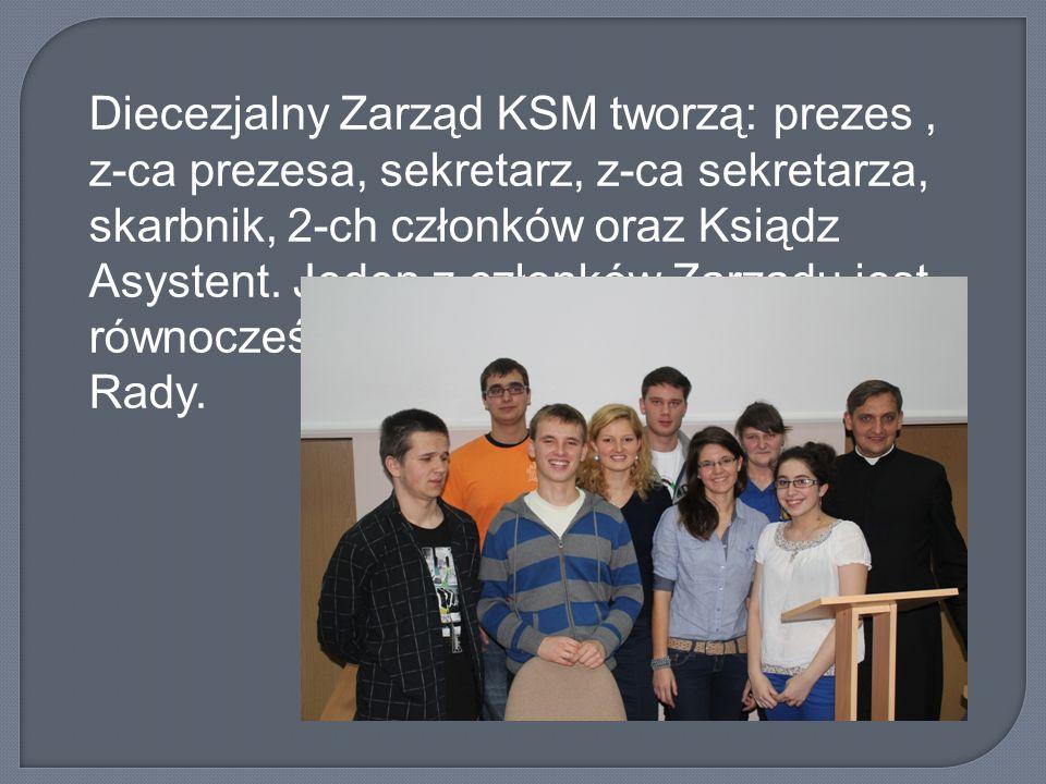 Diecezjalny Zarząd KSM tworzą: prezes , z-ca prezesa, sekretarz, z-ca sekretarza, skarbnik, 2-ch członków oraz Ksiądz Asystent.