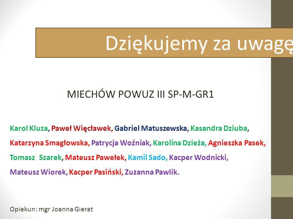 MIECHÓW POWUZ III SP-M-GR1