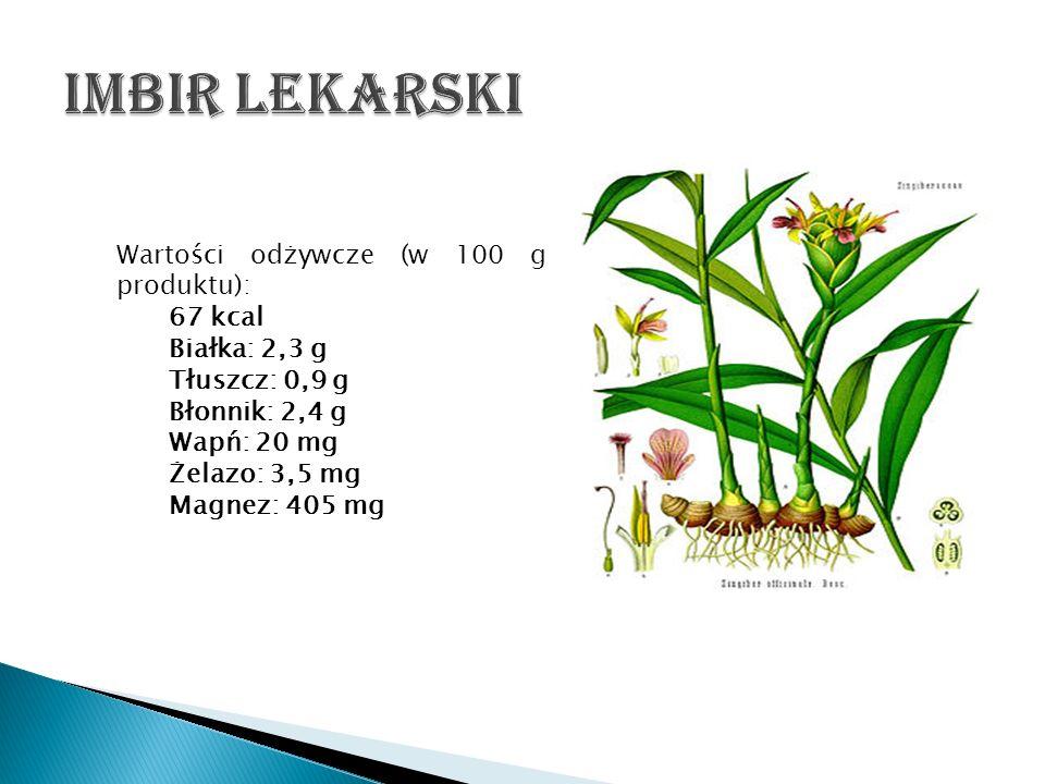 Imbir lekarski Wartości odżywcze (w 100 g produktu): 67 kcal