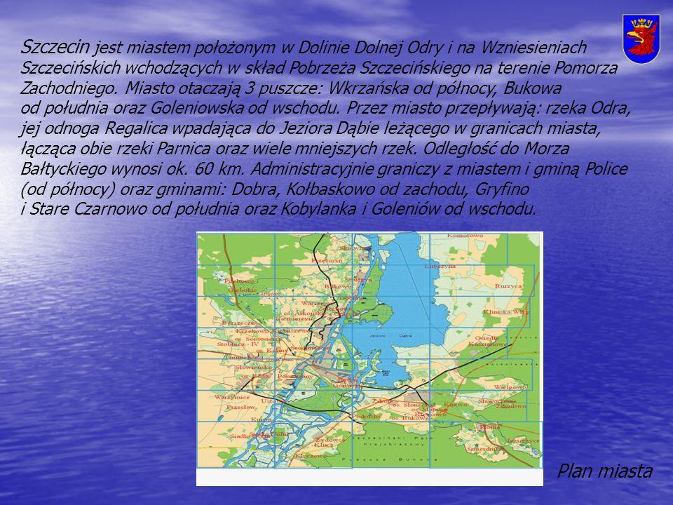 Szczecin jest miastem położonym w Dolinie Dolnej Odry i na Wzniesieniach Szczecińskich wchodzących w skład Pobrzeża Szczecińskiego na terenie Pomorza Zachodniego. Miasto otaczają 3 puszcze: Wkrzańska od północy, Bukowa