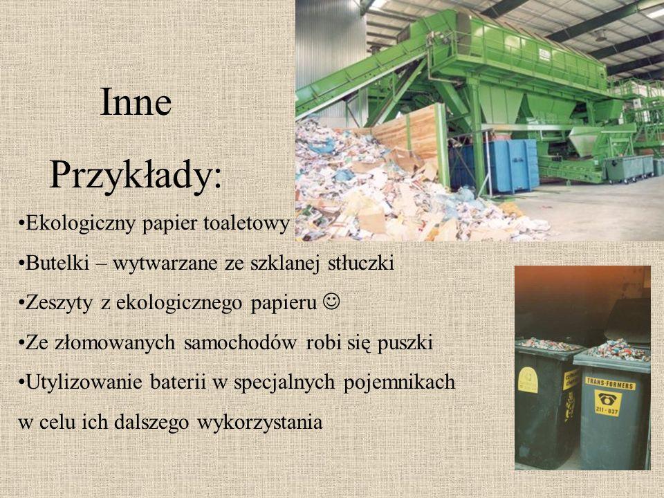 Inne Przykłady: Ekologiczny papier toaletowy