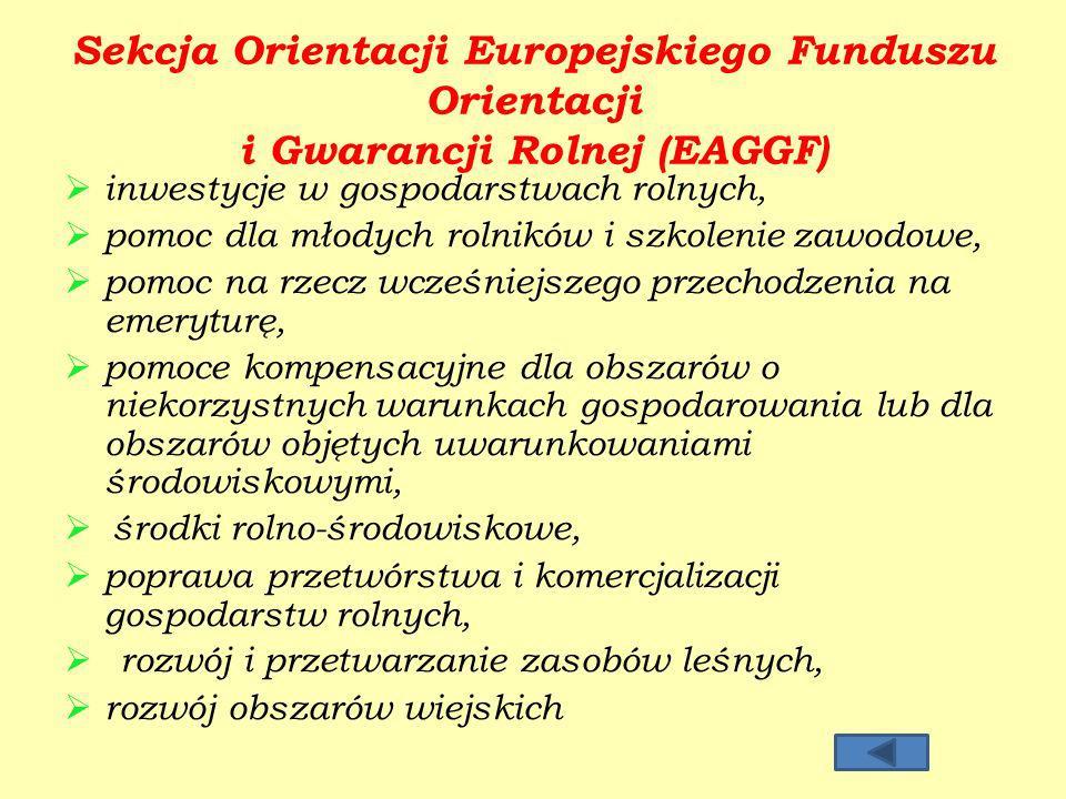 Sekcja Orientacji Europejskiego Funduszu Orientacji i Gwarancji Rolnej (EAGGF)