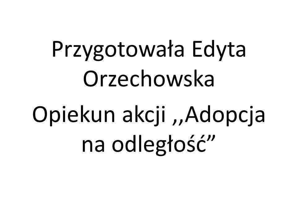 Przygotowała Edyta Orzechowska Opiekun akcji ,,Adopcja na odległość