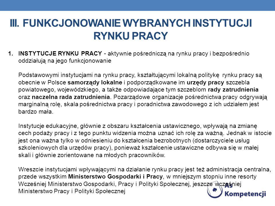 iii. Funkcjonowanie wybranych instytucji rynku pracy