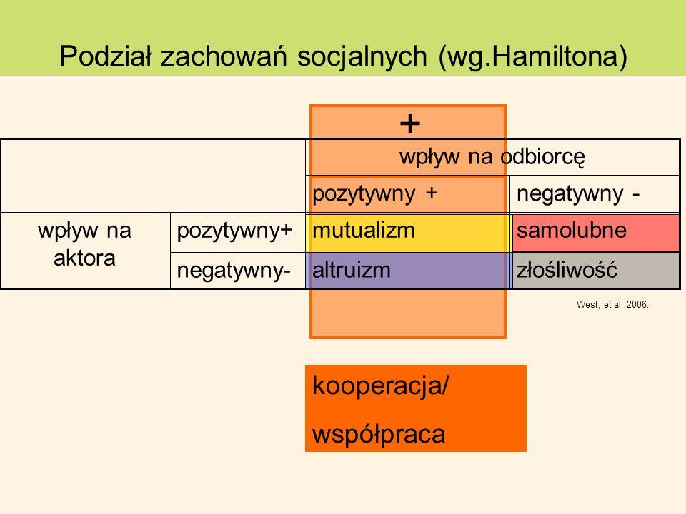Podział zachowań socjalnych (wg.Hamiltona)