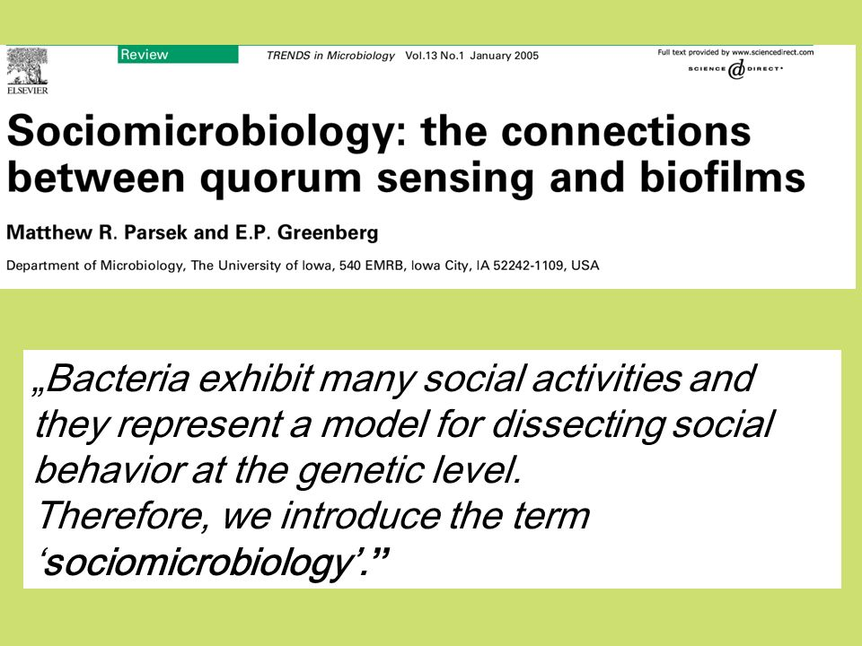 Therefore, we introduce the term 'sociomicrobiology'.