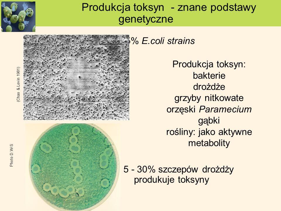 Produkcja toksyn - znane podstawy genetyczne