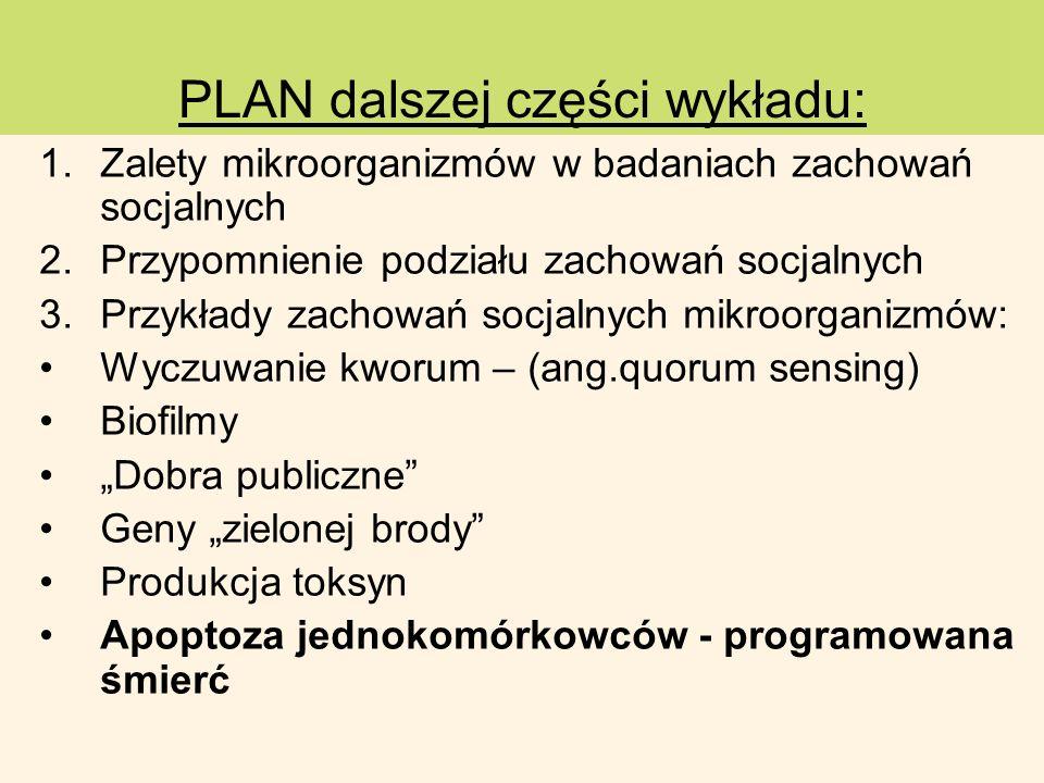 PLAN dalszej części wykładu:
