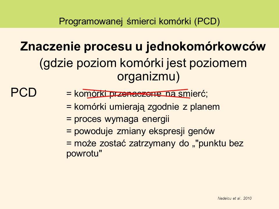 Znaczenie procesu u jednokomórkowców