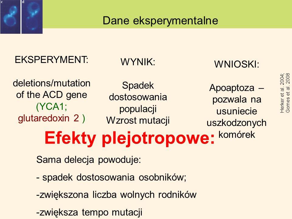Efekty plejotropowe: Dane eksperymentalne EKSPERYMENT: WYNIK: WNIOSKI: