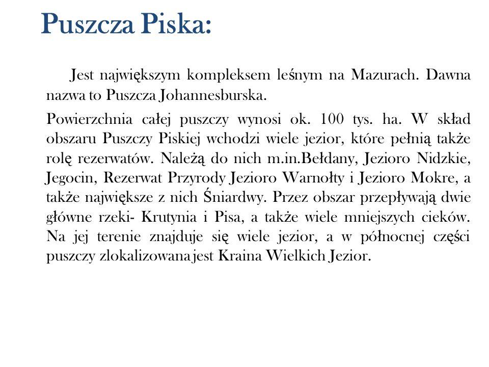 Puszcza Piska: Jest największym kompleksem leśnym na Mazurach. Dawna nazwa to Puszcza Johannesburska.