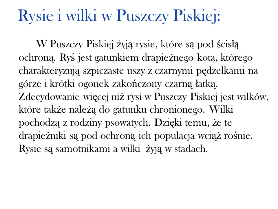 Rysie i wilki w Puszczy Piskiej: