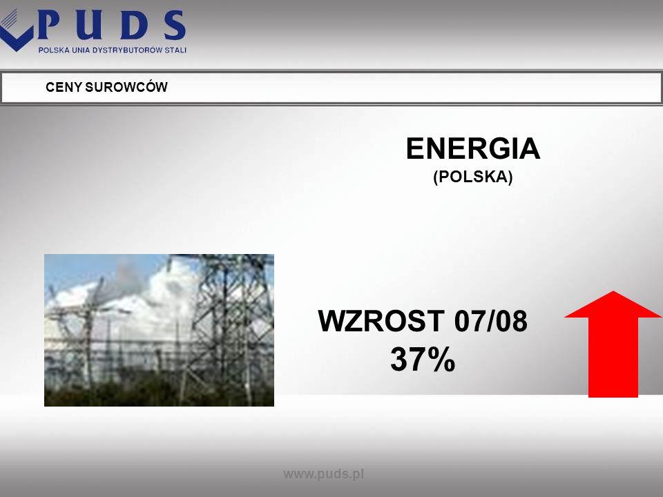 ENERGIA (POLSKA) WZROST 07/08 37%