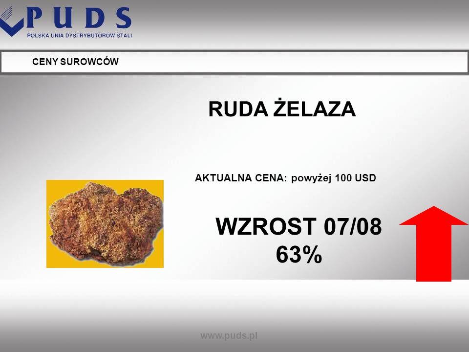 WZROST 07/08 63% RUDA ŻELAZA AKTUALNA CENA: powyżej 100 USD