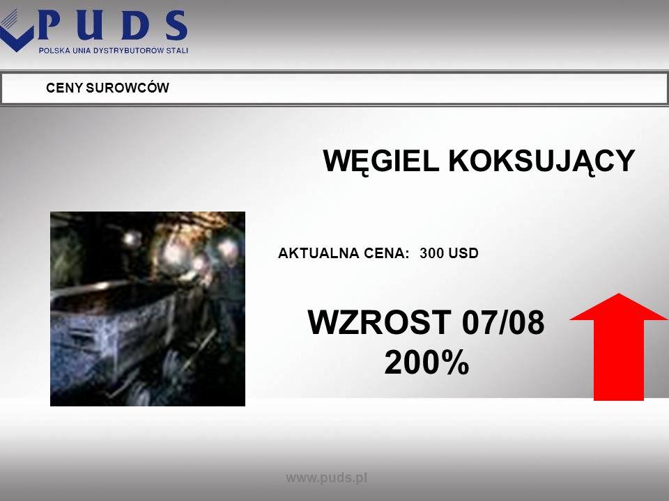 WZROST 07/08 200% WĘGIEL KOKSUJĄCY AKTUALNA CENA: 300 USD